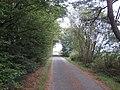 Tunnel of trees at Lowermoor - geograph.org.uk - 568936.jpg