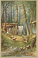 Twelve Adirondack Sketches - Campe Edgar, Lake Saranac by Boston Public Library.jpg