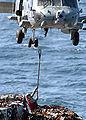 US Navy 020224-N-6492H-522 HH60-H Sea Hawk VERTREP.jpg