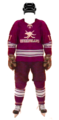 Uniform 2015 Queensland home.png