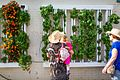 Urban Vertical Farm With Woman & Child.jpg
