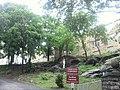 Ursuline Convent Bedfd Pk Blvd jeh.jpg