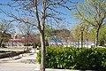 VIEW , ®'s - DiDi - RM - Ð 6K - ┼ , MADRID PARQUE de PEÑUELAS JARDÍN - panoramio (106).jpg