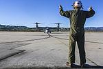 VMM-364 Welcomes First M-22 Osprey 140115-M-ZH987-015.jpg