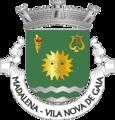 VNG-madalena.png
