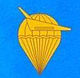 Vietnam People's Air Force Paratroops