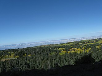 Grand Mesa - A view north across Grand Mesa National Forest.