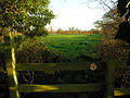 View from footbridge across stile in fields south of Crickheath - geograph.org.uk - 291613.jpg