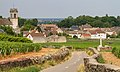 View of Pommard, France on Bicycle.jpg