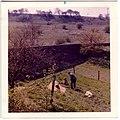 View of Sunlit Hillside - geograph.org.uk - 340949.jpg