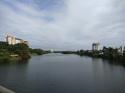 View of periyar river from mangalapuzha bridge.jpg