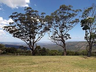 Mount Kynoch, Queensland - View southeastwards from Mount Kynoch lookout, 2014
