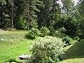 Viitna - panoramio - Aulo Aasmaa (1).jpg