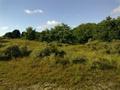 Vlakte van Waalsdorp (Waalsdorpervlakte) 2016-08-10 img. 418.png