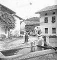 Vodnjak v Svinu 1951.jpg