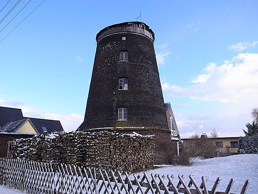 Wörlitz Windmühle