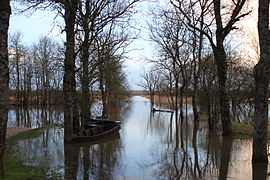The flooded Port of the Montru, in February 2014, the Goulaine Marsh, La Chapelle-Heulin