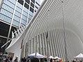 WTC Hub Sep 2018 10.jpg