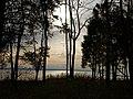 WW Potomac River Through Trees TS.jpg