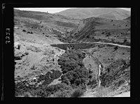 Wady Sha'ib Es-Salt, Amman, etc. Wady Sha'ib looking up the valley showing road & bridge LOC matpc.15294.jpg