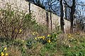 Wall around a garden - geograph.org.uk - 1249583.jpg