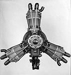 Walter Polaris (1932).jpg