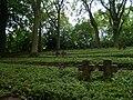 War Cemetery Helenenberg 4.JPG
