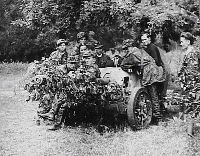 Warsaw Uprising Canon in Krasiński Garden