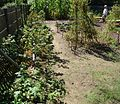 Washington Crossing NJ State Park vegetable garden.JPG