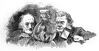 The Water-Babies, A Fairy Tale for a Land Baby - Richard Owen and Thomas Henry Huxley inspect a water baby in Linley Sambourne's 1885 illustration.