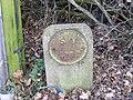 Water Main Marker - geograph.org.uk - 1051345.jpg