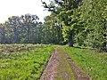Weg - panoramio (21).jpg