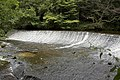 Weir Water of Leith, Colinton Dell - geograph.org.uk - 1469822.jpg