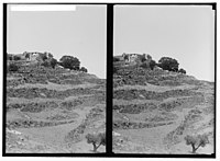 Weli of Budrieh at Sherafat and the preparing of a sacrifice. General view of the weli. LOC matpc.01410.jpg