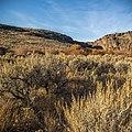 West Little Owyhee Wild and Scenic River (41960493451).jpg
