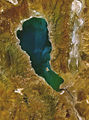 Wfm pyramid lake closeup.jpg