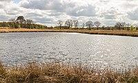 Wijnjeterper Schar, Natura 2000-gebied provincie Friesland 31.jpg
