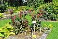 Wikipedia 13. Fotoworkshop Botanischer Garten Erlangen 2013 by-RaBoe 055.jpg