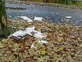Wilde Müllkippen in Herne - panoramio.jpg