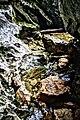 Wildfrauenloch 7.jpg