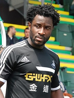 Wilfried Bony - Bony with Swansea City in 2013