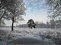 Winterlandschaft im Duvenstedter Brook.jpg