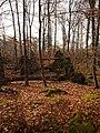 Wolbecker Tiergarten (14).JPG