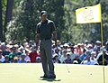 Woods on the Green.jpg