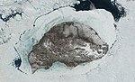 Wrangel-island-sat.jpg