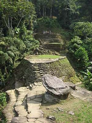 Ciudad Perdida - View of the central area of the city. Wooden structures once stood on the stone platforms.