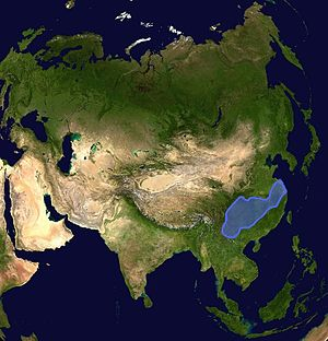 South China (continent) - Current location within Asia.