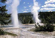 Yellowstone Nationalpark3.jpg