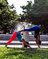 Yoga (9707616220).jpg