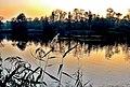 Złoty potok - park pałacowy,,.jpg